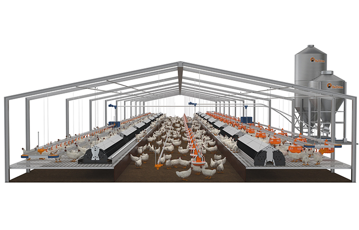 Steel Structure Broiler Chicken House Poultry Farm